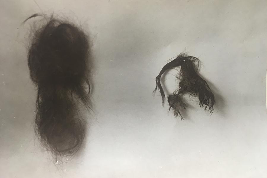 Picture of two locks of Thomas Paine's hair.